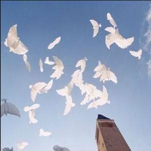 Releasing of Dove Balloons