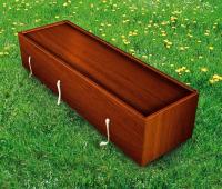darkwood coffin