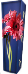 Gerbera Coffin