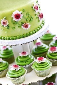 Cup and Cupcakes